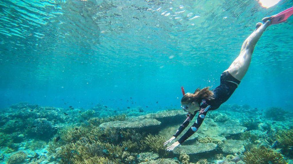 Best Komodo Liveaboard for Beginner Divers in Flores